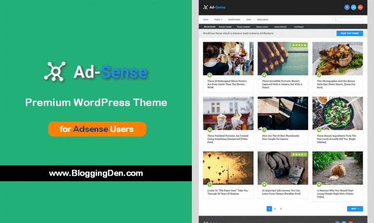 Ad-sense Premium WordPress theme for adsense users