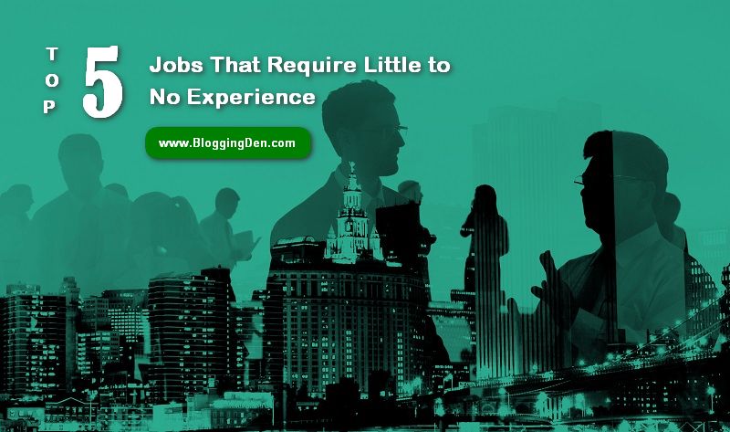 Top 5 Jobs That Require Little to No Experience