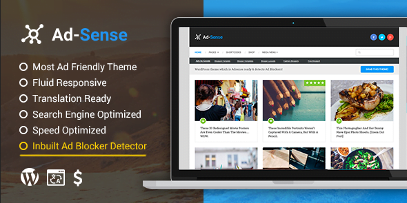 Ad-sense Premium WordPress theme