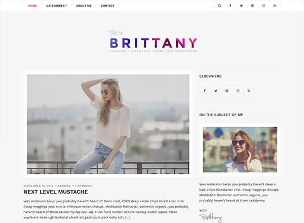 brittany-light wordpress theme
