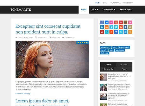 schema-lite wordpress theme
