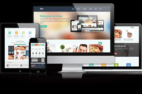 responsive wordpress themes layout